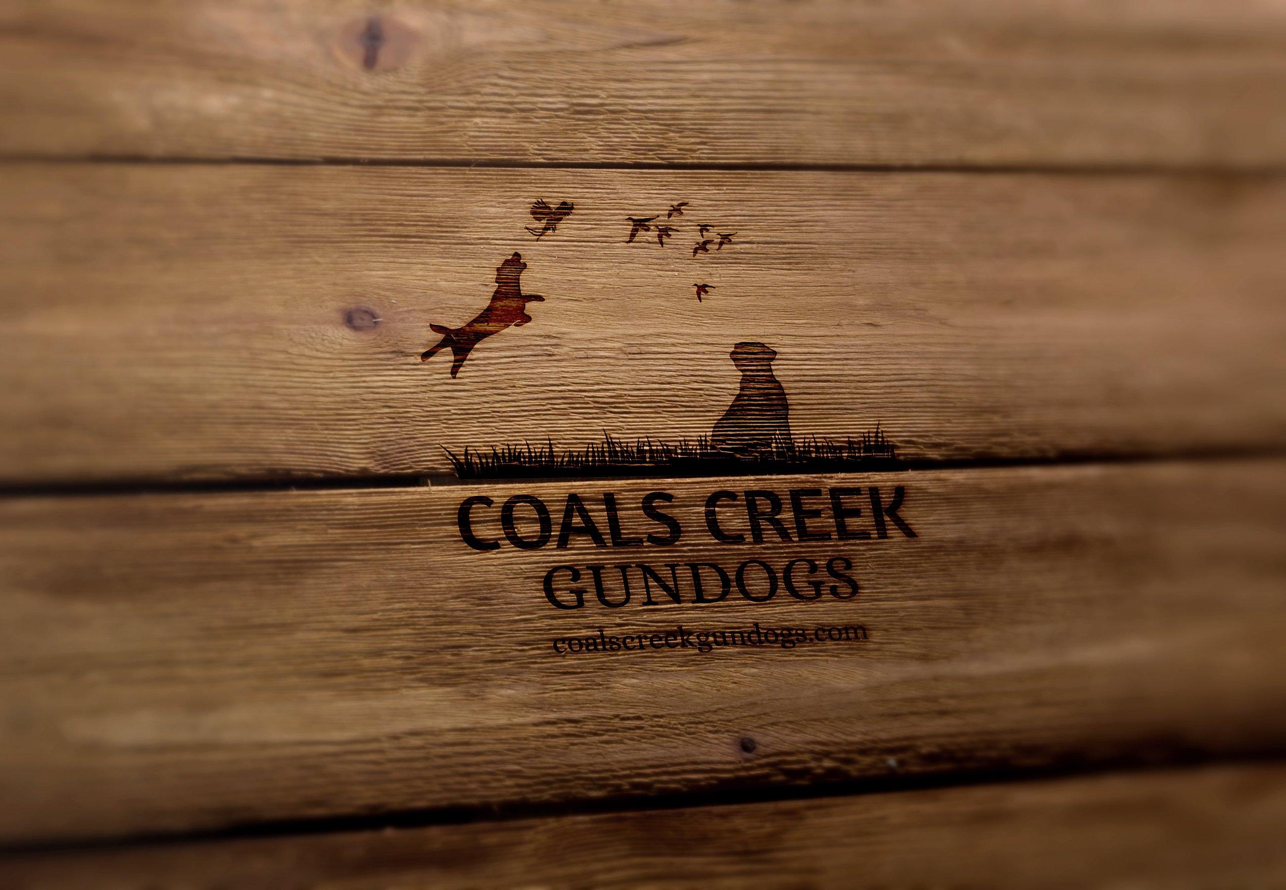 Coals-Creek-Logo-Design