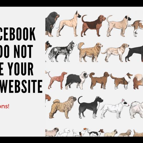 best website agency for breeders